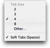 Tab Size Settings